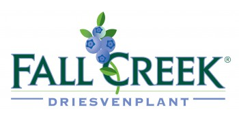 Fall Creek DVP logo